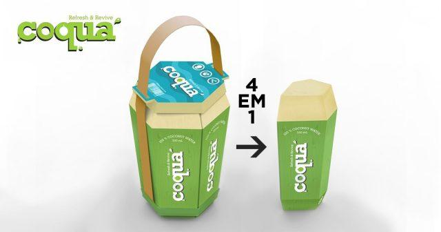Inspire-se com essa caixinha de água de coco semi-premiada! 5