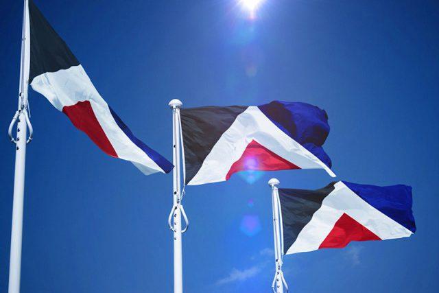 Polêmicas no redesign da bandeira da Nova Zelândia! 2