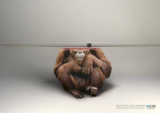 Orangotango cortando, como se estivesse sendo imprimido em 3D